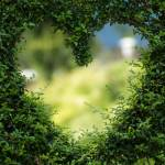 Loving: Sharing Wellness Profile Picture