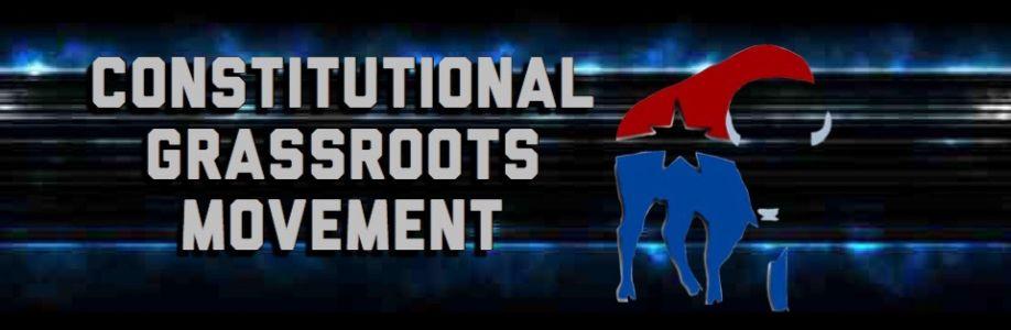ConstitutionalGrassrootsMovement Cover Image