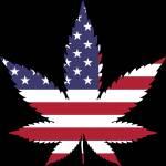 Cannabis Profile Picture