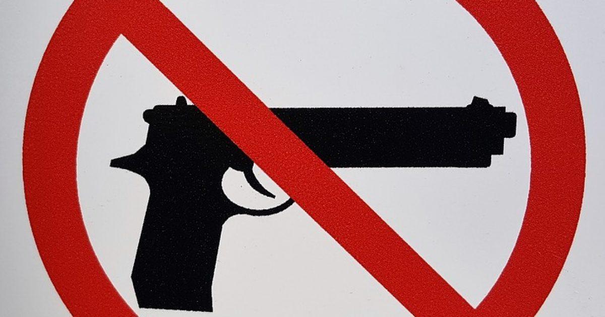 Gun Rights Supporter Reveals Democrats' Anti-Gun Endgame - Big League Politics