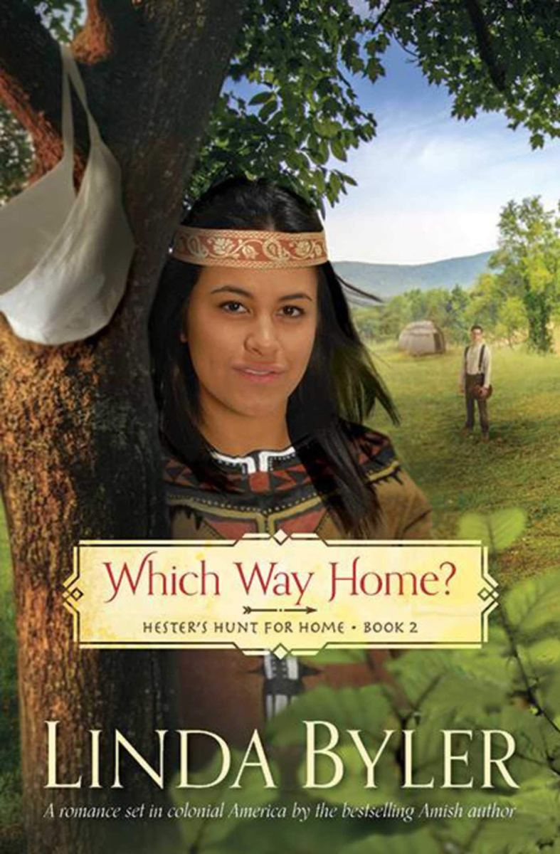 Which Way Home? by Linda Byler, book 2 – Nancy's Blogspot