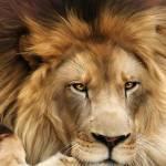 Kadeah Wade Profile Picture