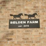 Tim Belden Profile Picture