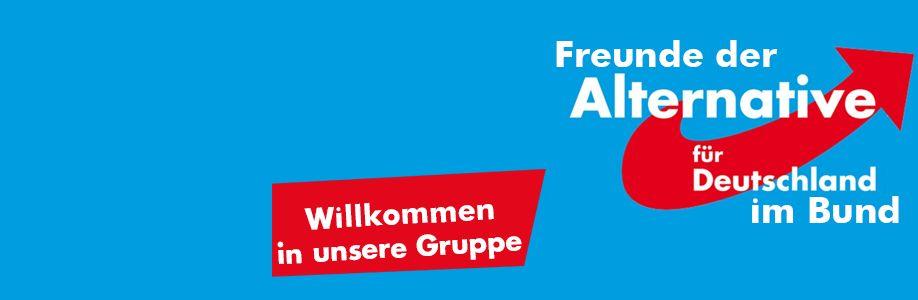Freunde der AfD im Bund Cover Image