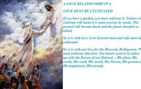 A  LOVE  RELATIONSHIP  6