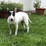 Konstanze Profile Picture
