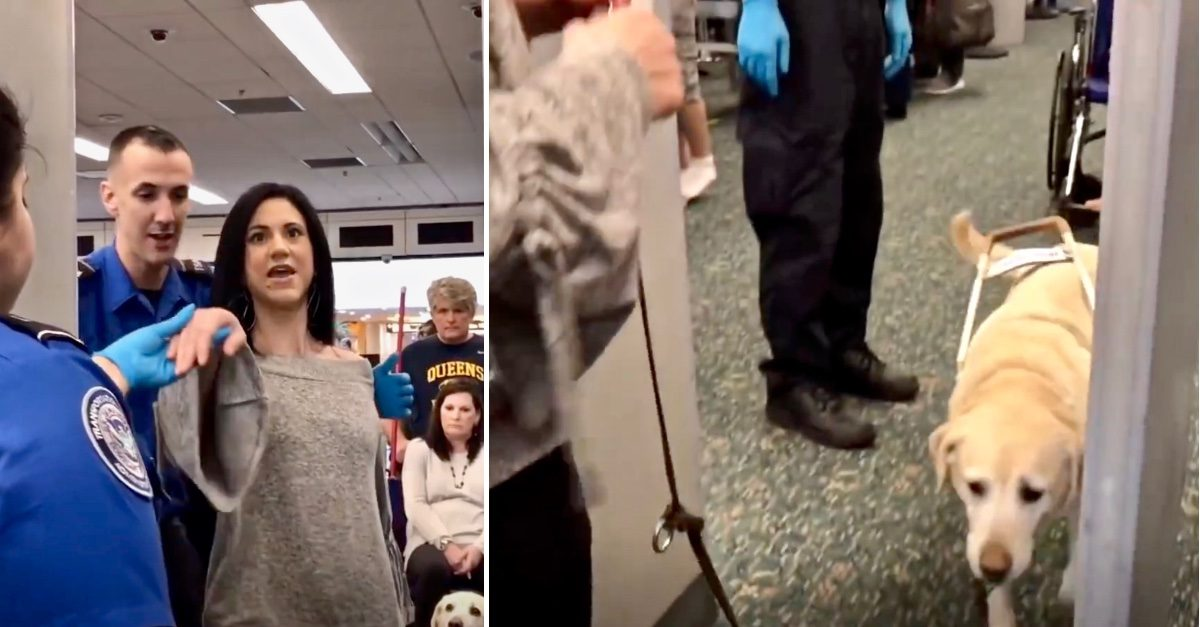 Guide Dog Shows What She Does to Help Her Owner Through Airport Security Smoothly - Jesus is LIFE