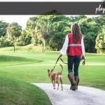 Kathy @ Dog Walker Shop Profile Picture