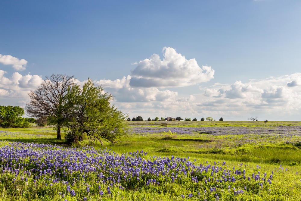 Fight between Texas landowner and Washington perfectly illustrates the federal government's overreach - COSAction