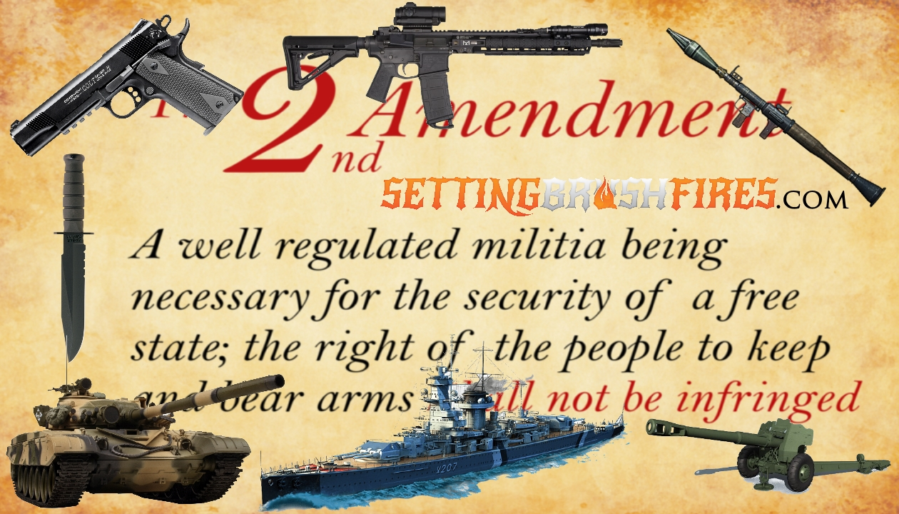 Setting Brushfires 06-07-2019: America, You Need An Education On The Second Amendment! - Guns in the News