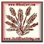 Wheat Profile Picture