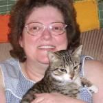 Robin Scott Profile Picture