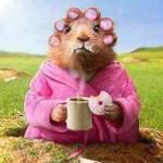 Barbi Martin profile picture