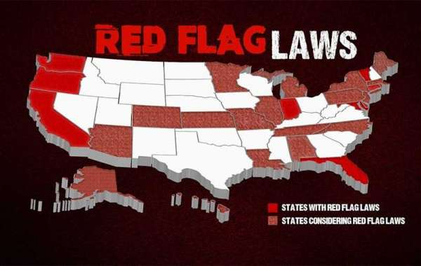 Red Flag Laws & Why they Won't Work:  Here's what will happen...