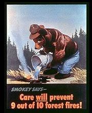 The Smoky Mountain Hiking Blog: Smokey Bear turns 75 today!
