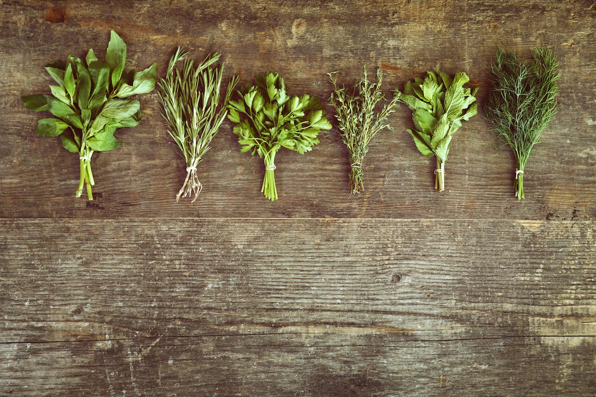 Top three scientifically researched herbs to control blood sugar