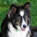 Carolma245 Profile Picture