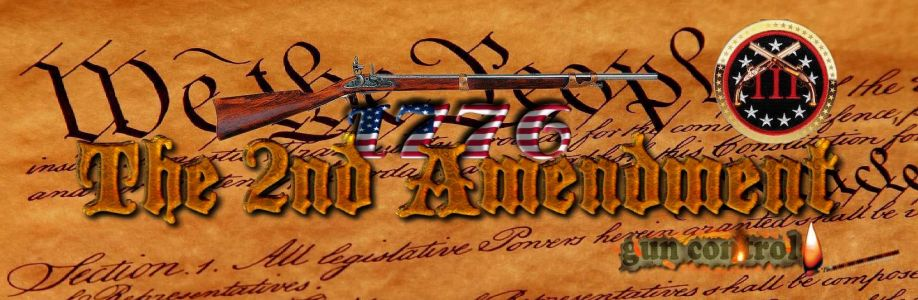 The 2nd Amendment Cover Image