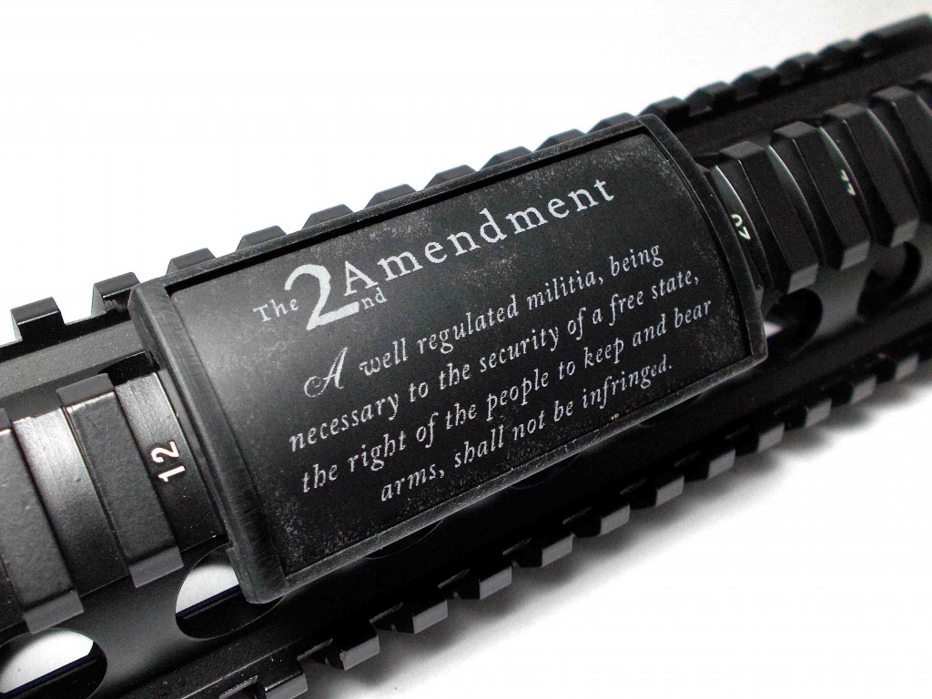 Are These The Last Few Days In The Life Of The Second Amendment? - Guns in the News