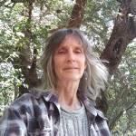 Bev Hill profile picture