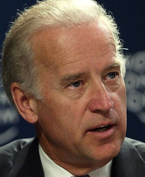 Joe 'The Gaffe' Biden Does it Again: Domestic Violence – We Have to 'Keep punching at it' – True Conservative Pundit