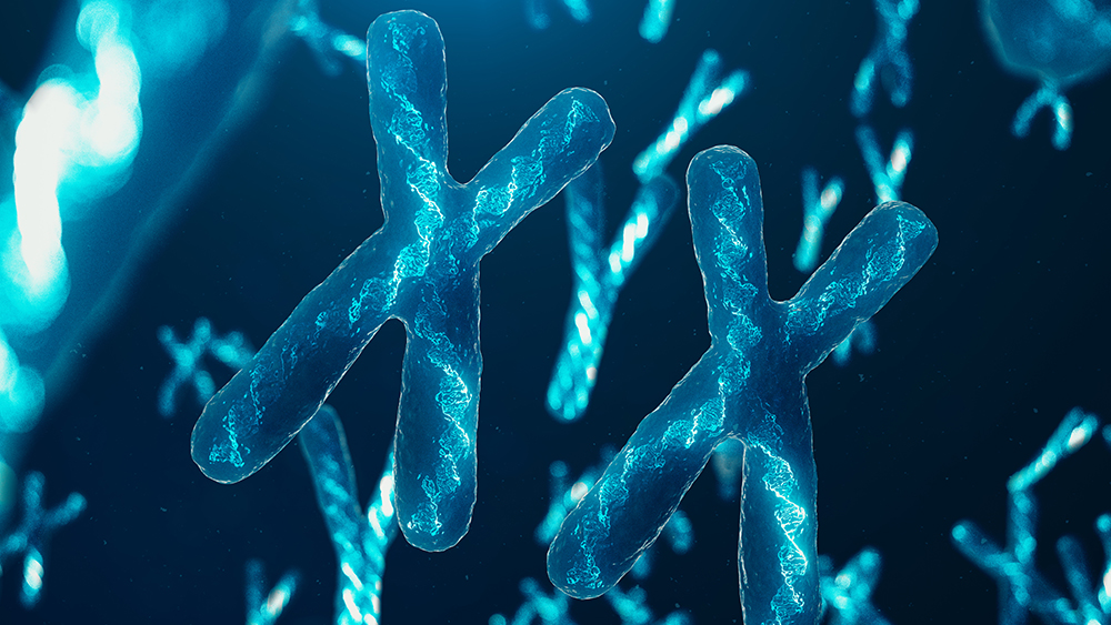 Y-Chromosome Study Confirms Genesis Flood Timeline | The Institute for Creation Research