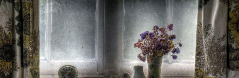 Sheila Cover Image