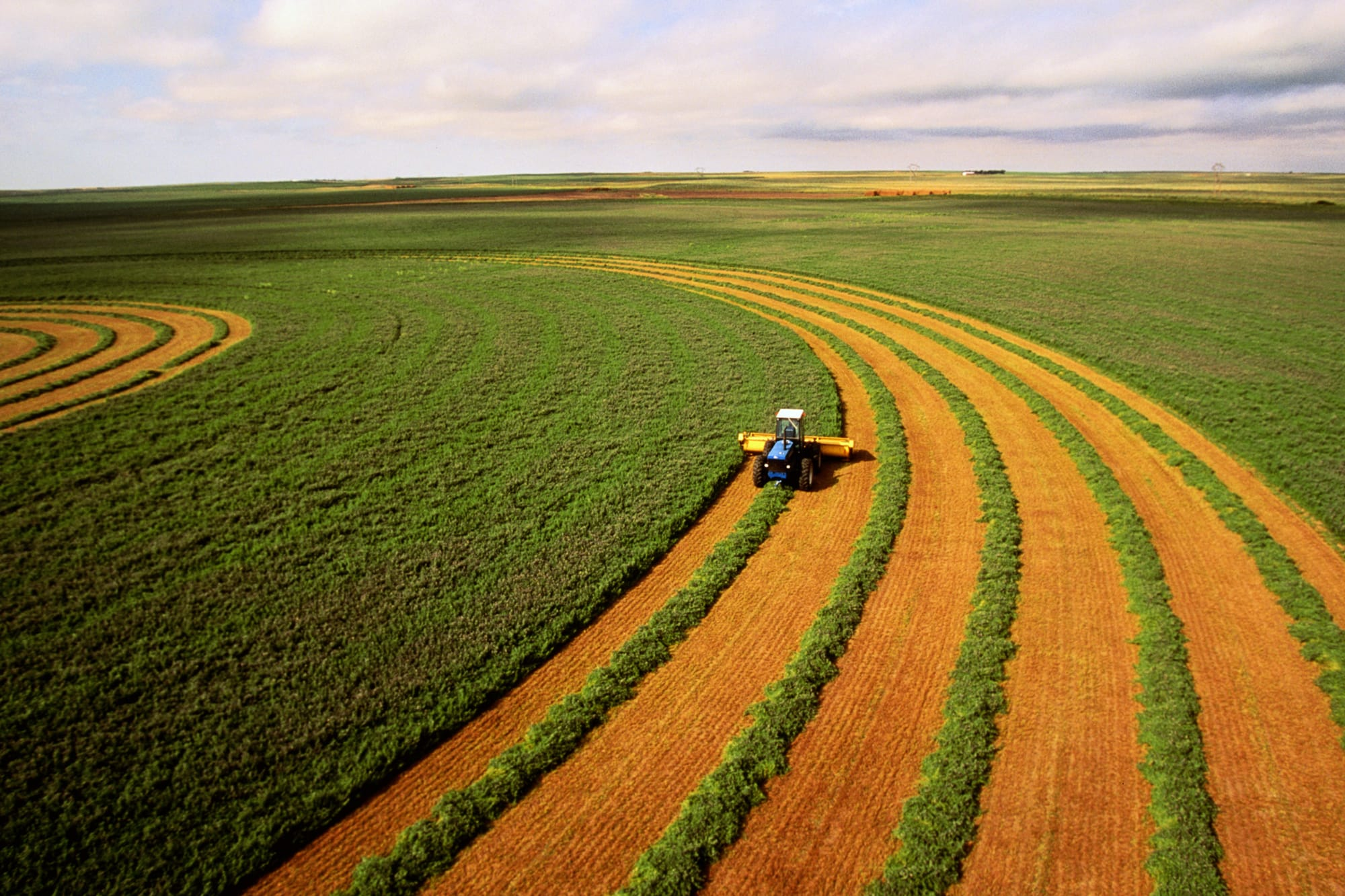 Saudi Arabia buying up farmland in US Southwest