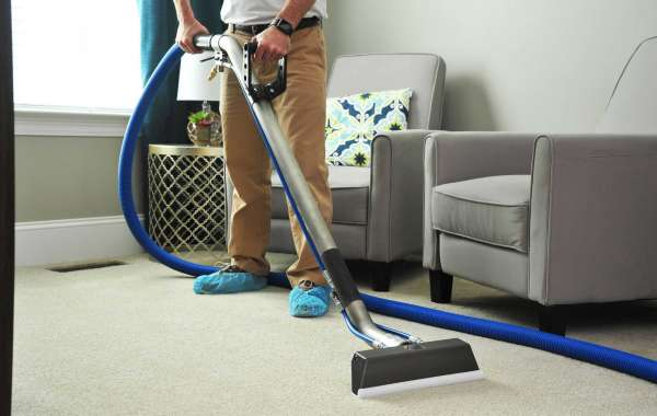 Receive Clean And Odour Free Carpets From The Carpet Cleaning Company In Mortlake