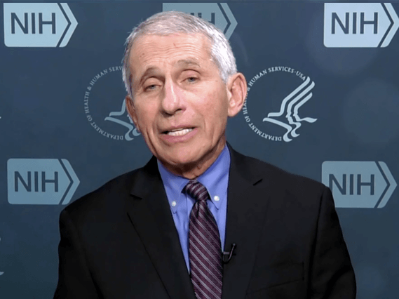 Dr Fauci 3 Strikes You're Out - National Immigrant Network