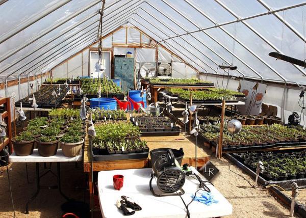 Colorado Agricultural Leadership Foundation still helping Colorado kids | TheFencePost.com