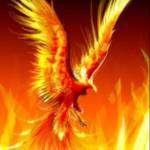 Toni (phoenix) Miller profile picture