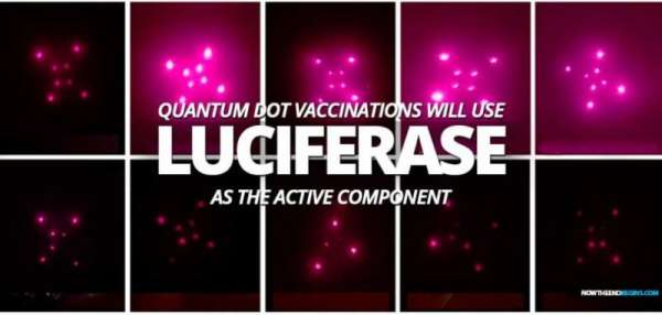 MUST READ: An Enzyme Called LUCIFERASE is What Makes Bill Gates Implantable Vaccine Work - VACCINE ID - Stillness in the Storm