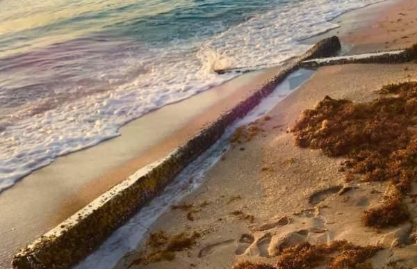 Giant Cross Washes Up On Florida Shore Bringing Hope | God TV