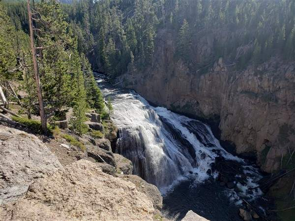 A Day in Yellowstone National Park - and a Milestone...