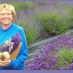 Carol Nelson Profile Picture