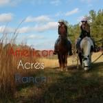 American Acres Profile Picture