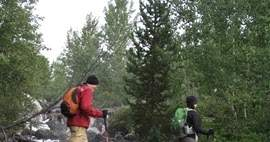 The Huckleberry Hiker: Grand Teton Reports Increase in Hiking and Camping