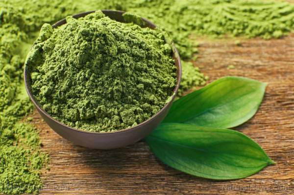 Curb your anxiety by drinking a cup of matcha green tea – NaturalNews.com