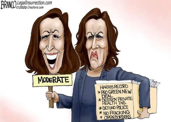 Political Cartoons - 2020