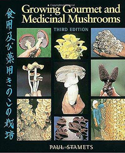 Pin on The Power of Mushrooms