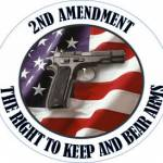 Our Rights to the 2nd Amendment Profile Picture