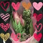 Barbara Stultz Bearden profile picture