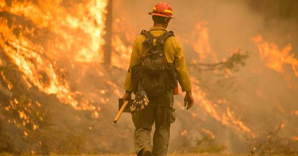 Police Arrest Multiple Suspects In Connection With West Coast Wildfires - The Police Tribune