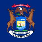 Michigan for 2A Sanctuary Counties Profile Picture