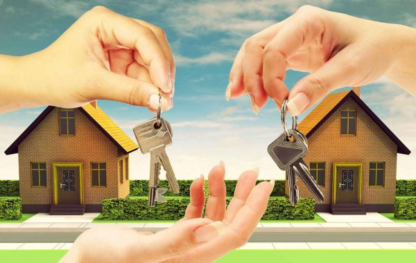 What are the basic rights of the tenants?