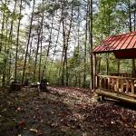 Homesteading & Back To Basics Profile Picture