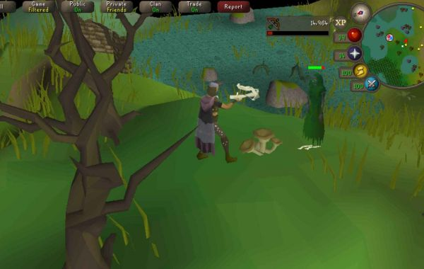 I havent played runescape in a while