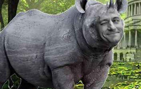 Buddy Walker's Swamp Creature Of The Week:Ryanus rinomorphus