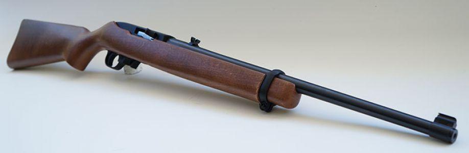 Rimfire Firearms Cover Image